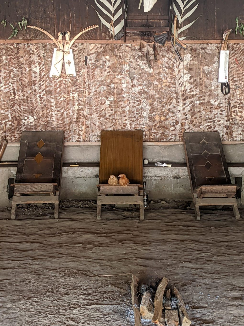 shows chickens in the shamans chair in bwiti temple
